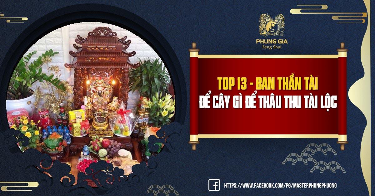 Top 13 - Ban Thần Tài Để Cây Gì Để Thâu Thu Tài Lộc