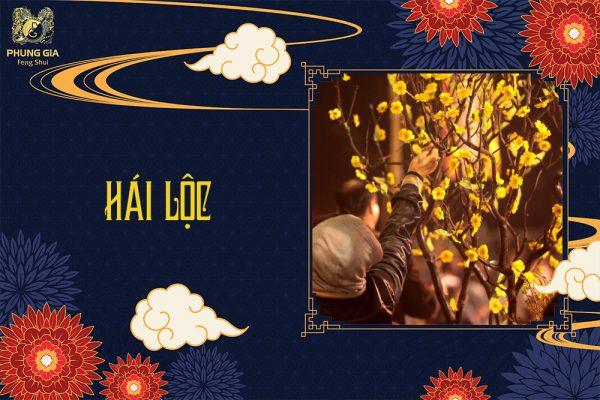 Hái Lộc