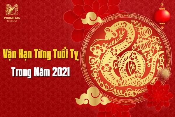 Vận Hạn Từng Tuổi Tý Trong Năm 2021