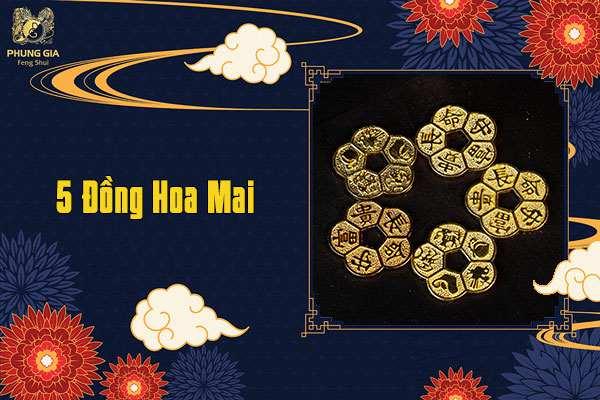5 Đồng Tiền Hoa Mai