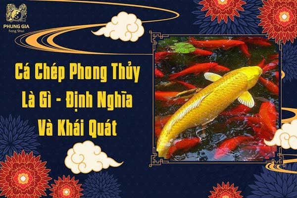 Cá Chép Phong Thủy Là Gì