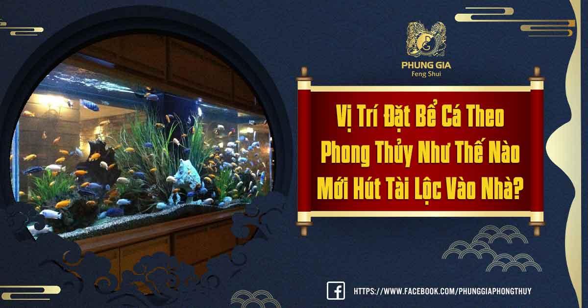 Vị Trí Đặt Bể Cá Theo Phong Thủy