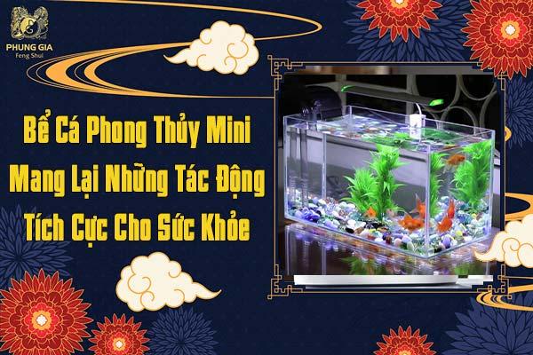 Bể Cá Phong Thủy Mini Mang Lại Những Tác Động Tích Cực Sức Khỏe