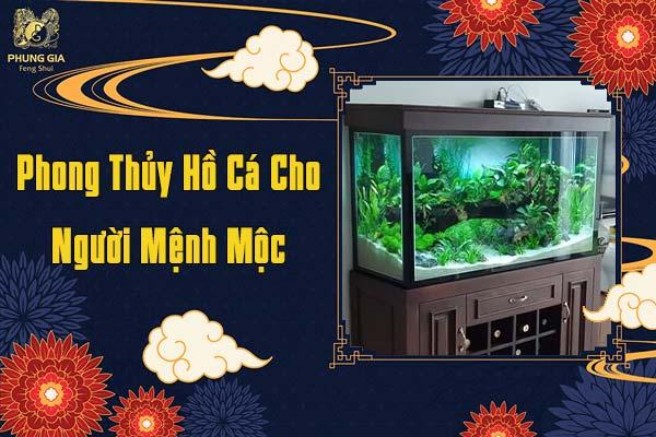 Phong Thủy Hồ Cá Cho Người Mệnh Mộc