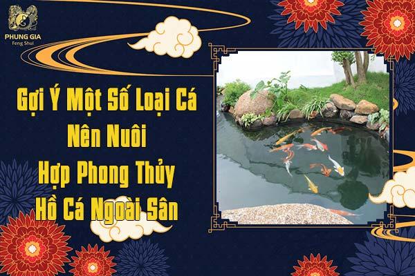 Một Số Loài Cá Nên Nuôi Hợp Phong Thủy Hồ Cá Ngoài Sân